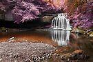 Fantasy Falls - West Burton by SteveMG