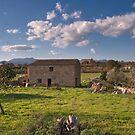 Mallorca: Rustic Alcudia by Kasia-D
