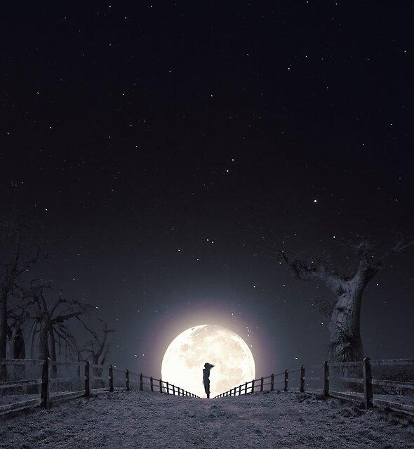 """""""Moon"""" by Luis Beltrán"""