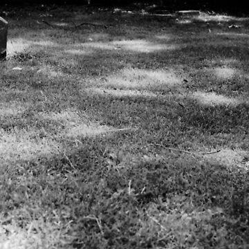 Loner by Ainsleyrk