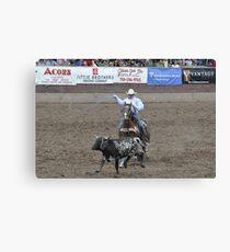Steer Roping Pikes Peak or Bust Rodeo Canvas Print