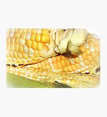 Harvest Gold Photographic Print