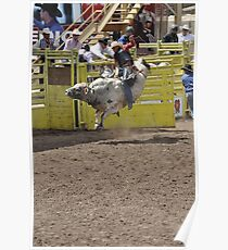 Bull Riding 1 Pikes Peak or Bust Rodeo Poster