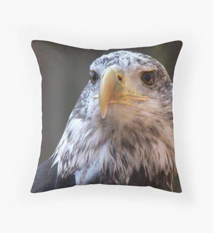 Adler II Throw Pillow