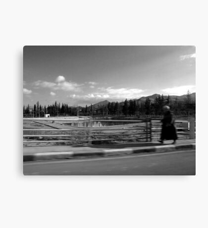 one man's walk to freedom Canvas Print