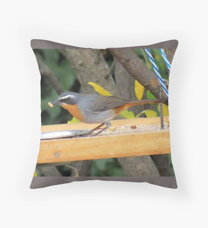 Janfrederik / Cape Robin Throw Pillow