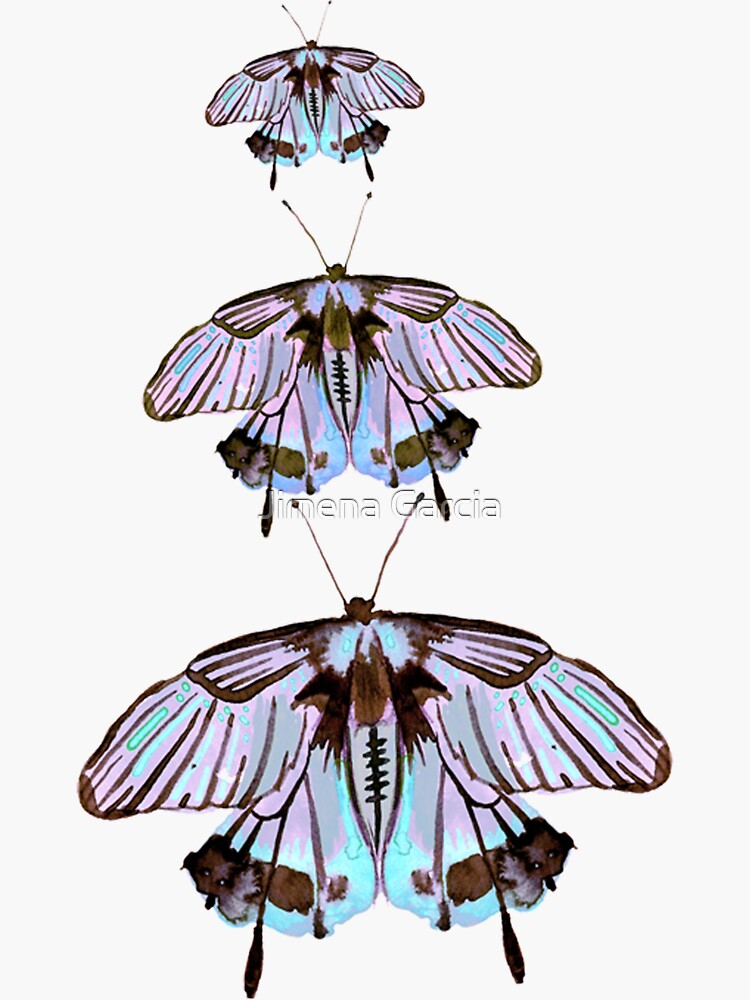 purple and pink watercolour butterflies by Jime-Creates
