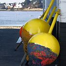 Marker Buoys by Pirate77