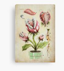 Piranha Plant Botanical Illustration Canvas Print