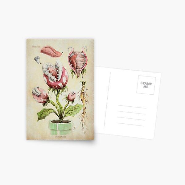 Botanische Illustration der Piranha-Anlage Postkarte