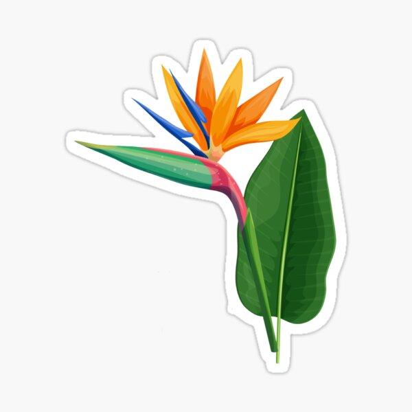 Bird of Paradise Tropical Flower Sticker