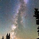 Rocky Mountain Milky Way and Falling Star by Bo Insogna