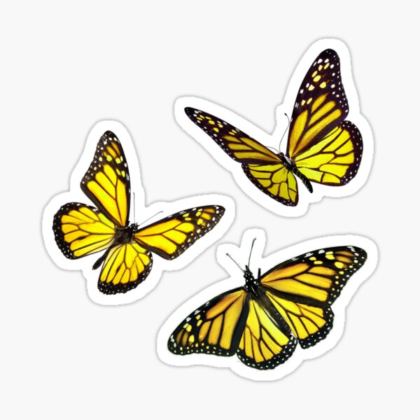 monarch butterfly sticker pack yellow Sticker