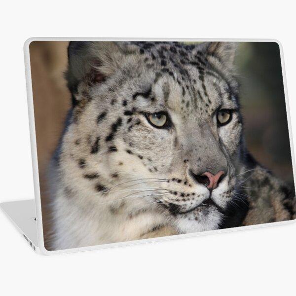 Snow Leopard Uncia Uncia Laptop Skin