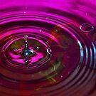 The Drop by Gary Buchan