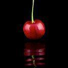 Solitary Cherry by RandiScott