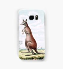 Kangaroos Vintage Drawing Samsung Galaxy Case/Skin