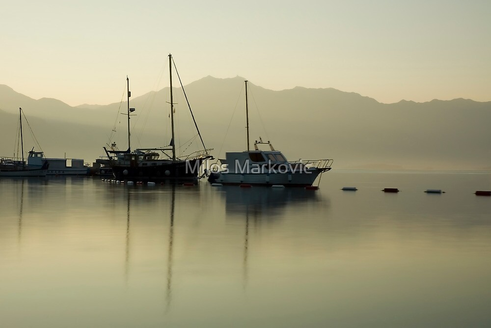 Morning light by Milos Markovic