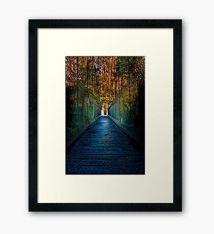Bulga Bridge #1 Framed Print