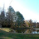 Huntington Police Recreation Farm by Fred Moskey