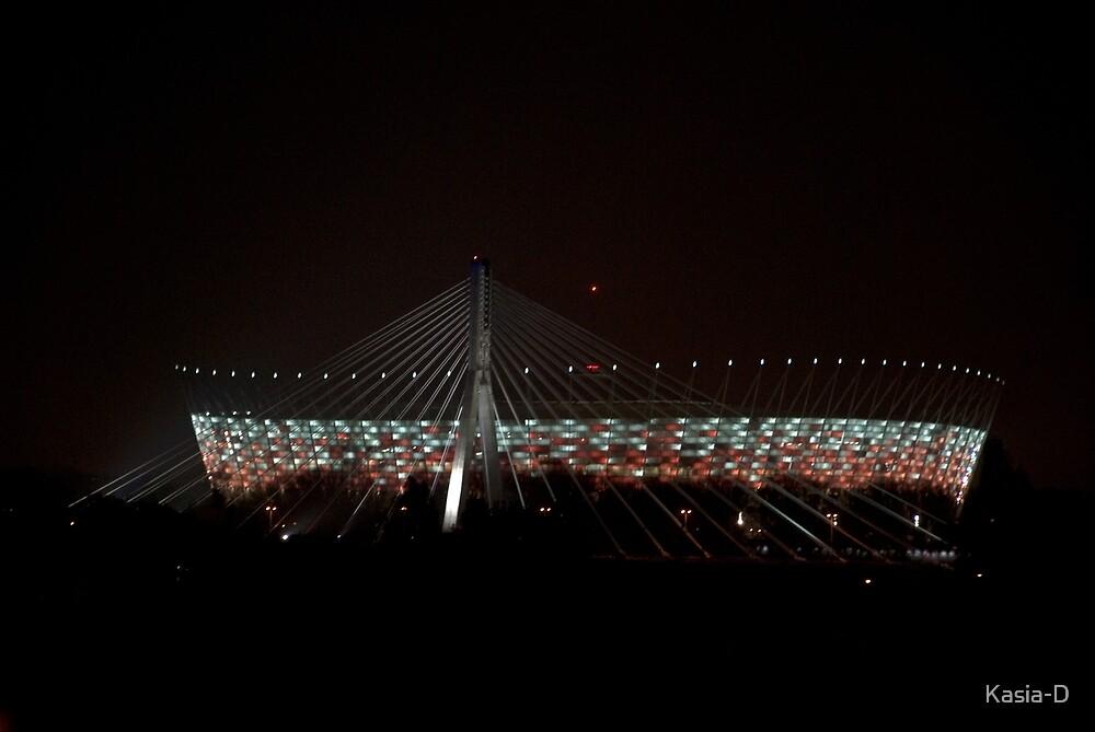 National Stadium, Warsaw by Kasia-D