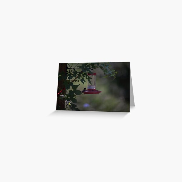 Hummer Silhouette Greeting Card
