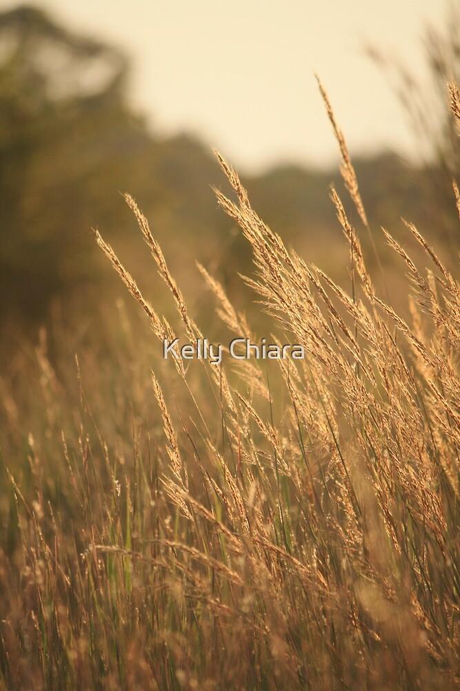 July Evening Breeze by Kelly Chiara