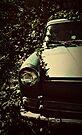 Studebaker by Joshua Greiner