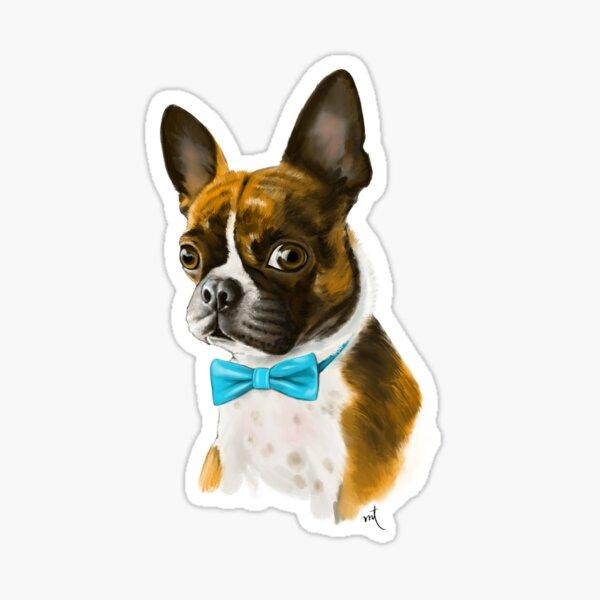 Ace the Boston Terrier Sticker