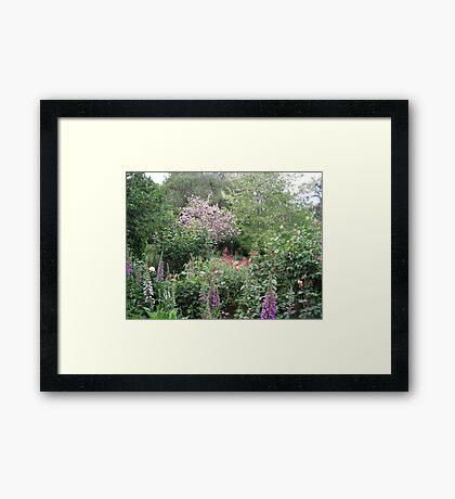 Country Garden Framed Print