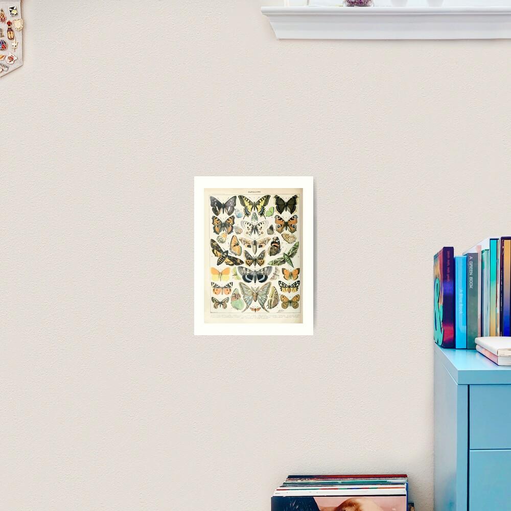 Adolphe Millot papillons A Art Print