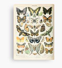 Adolphe Millot papillons A Leinwanddruck