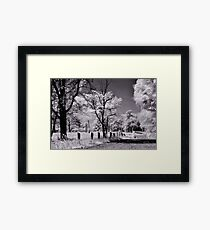 Mystical Reality  Framed Print