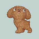 Toy-Poodle walking by Toru Sanogawa
