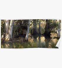 Down by the duck pond Poster