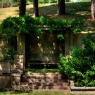 Dreamy Garden by Monica M. Scanlan