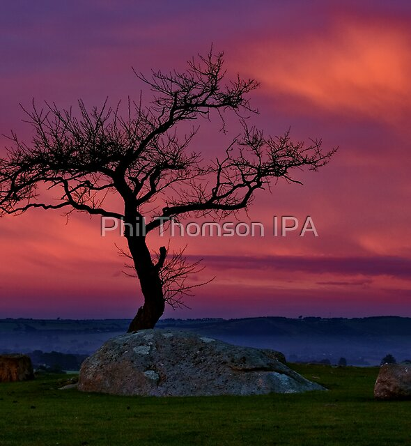 """""""Prelude"""" by Phil Thomson IPA"""
