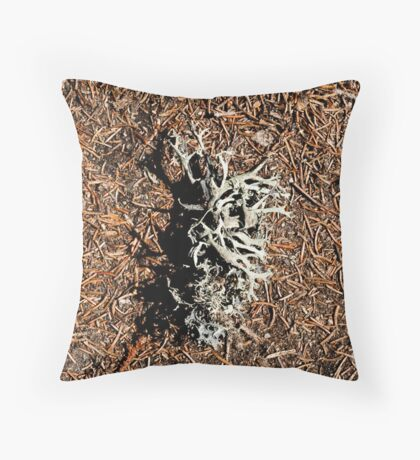 Textures and shadows Throw Pillow