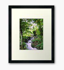 Lush Boquete  Framed Print