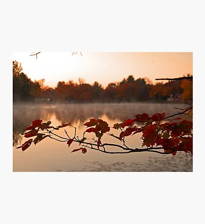 It's Fall Photographic Print