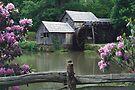 Mabry Mill - Spring by Joe Elliott