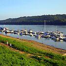 Ohio River at New Richmond, OH by debbiedoda