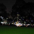 Through the Trees - Night by Stephen Horton