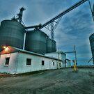 Grain Elevator by Steve Baird