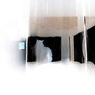 kush behind curtains 2 by Zefira