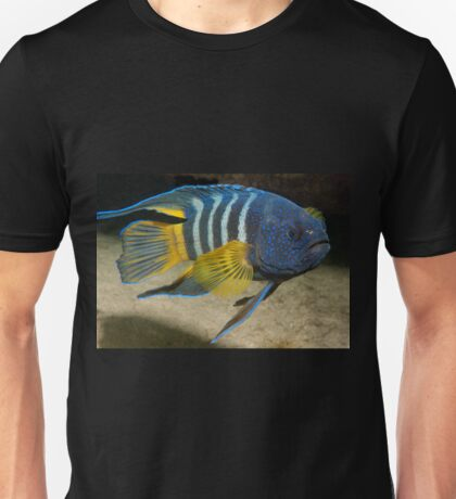 Eastern Blue Devil, Shark Point, Sydney T-Shirt