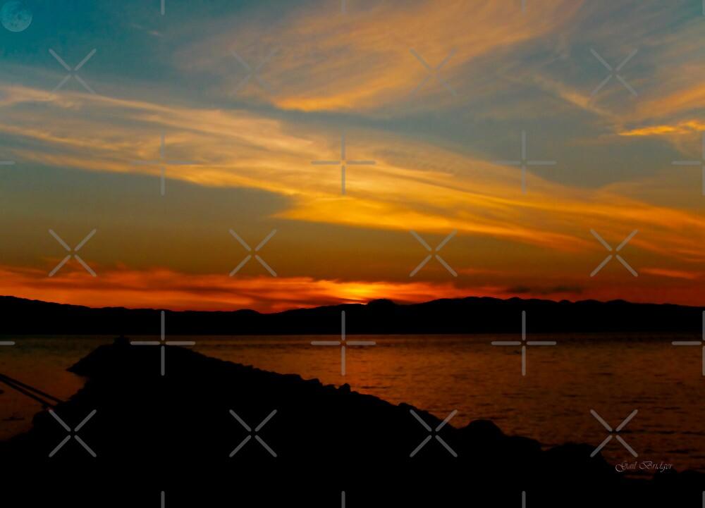 August Skies by Gail Bridger