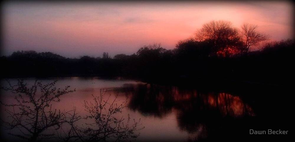 Evening Comes ©  by Dawn Becker