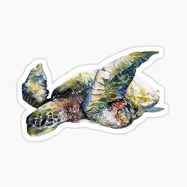 Green turtle Sticker
