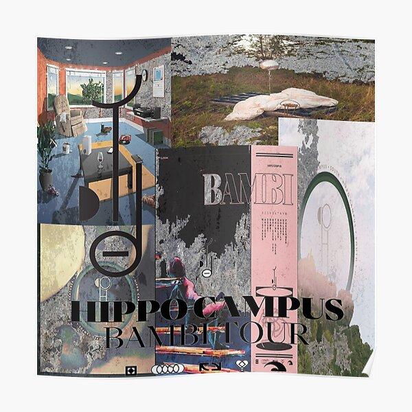 Hippo Campus Album y EP Art Póster